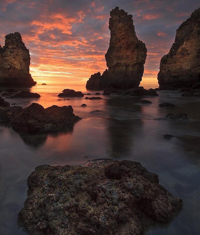 Uma Longa Caminhada, Nuno Ribeiro