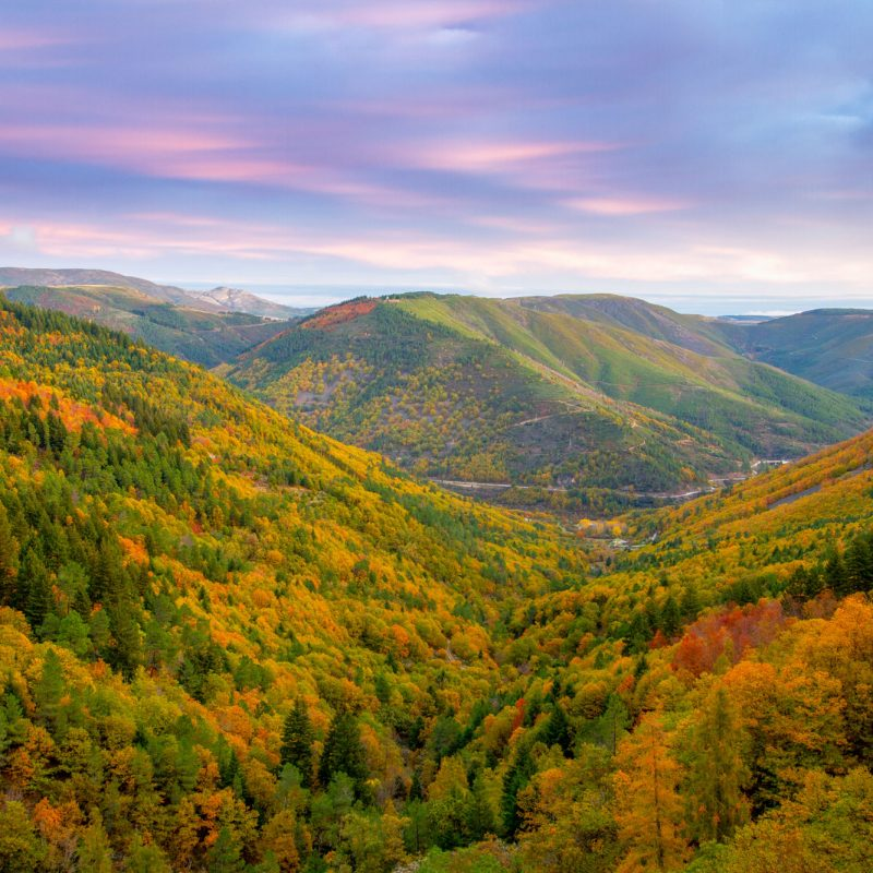 O Outono na Estrela, Vale de Leandres, Miguel Serra