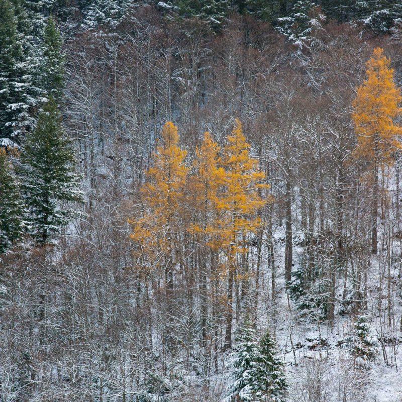 O Outono na Estrela, Poço do Inferno, Miguel Serra